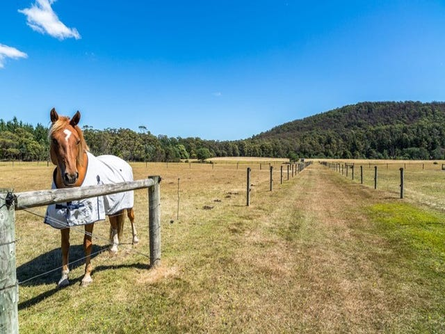 3537 West Tamar Highway, Sidmouth, Tas 7270