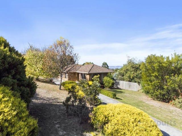 3 Foley Road, Kingston, Tas 7050