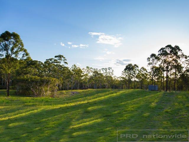 9 Jinker Circuit (Lot 406), Clarence Town, NSW 2321