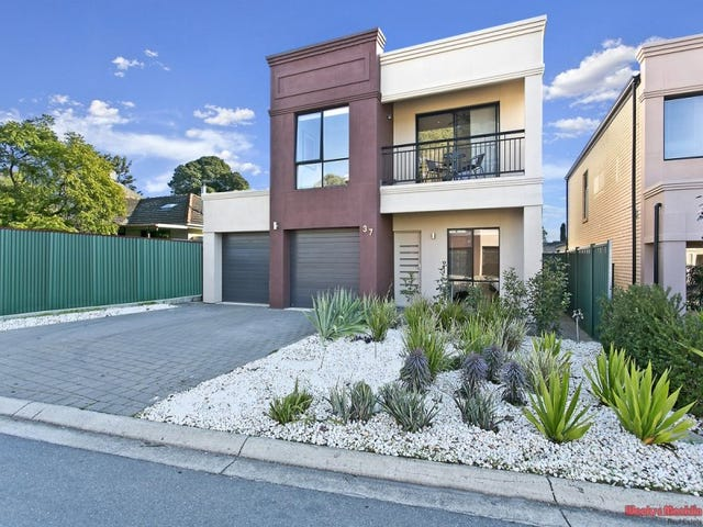 37 Milton Street, Tea Tree Gully, SA 5091