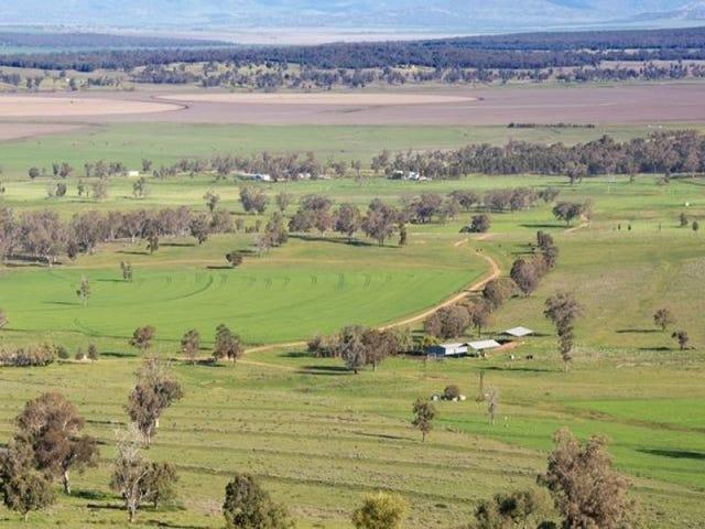 Barrington Mooki Springs Road, Tamworth, NSW 2340