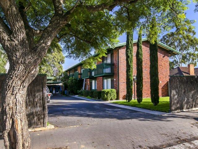 6 / 24 Price Avenue, Lower Mitcham, SA 5062