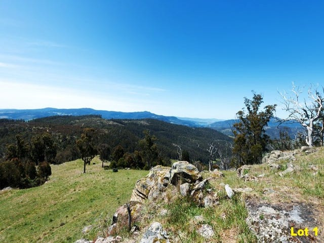 Lots 1, 2 & 3 Moss Beds Road, Lachlan, Tas 7140