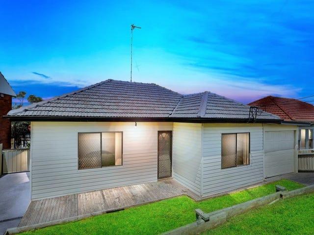 25 Minnegang Street, Warrawong, NSW 2502
