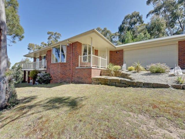 20 Woodridge Place, Tolmans Hill, Tas 7007
