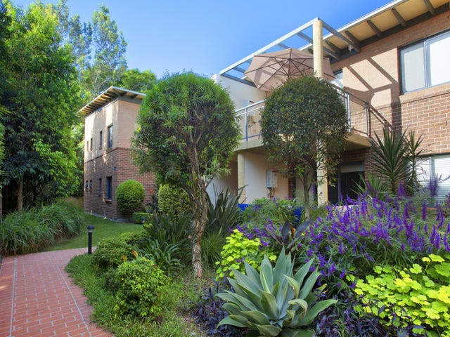 13/46-48 Old Pittwater Road, Brookvale, NSW 2100