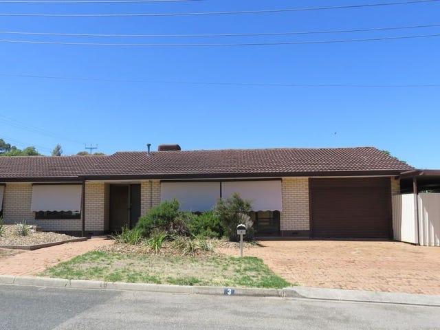 3 Bice Street, Modbury North, SA 5092