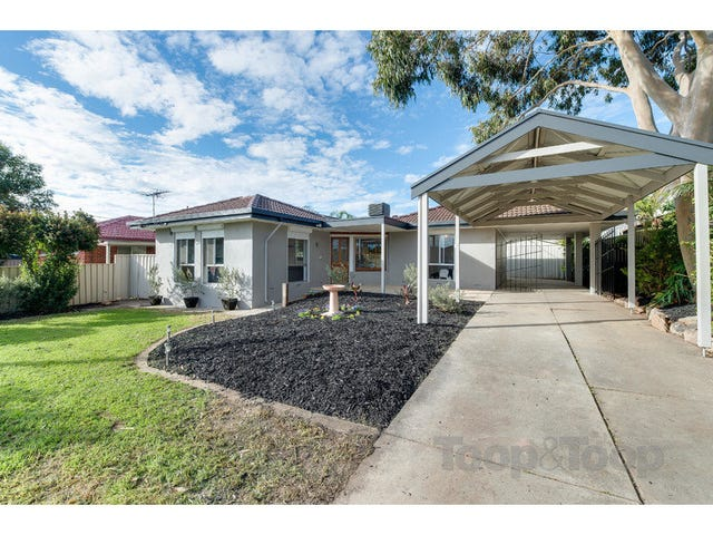 40 Greenwillow Avenue, Paradise, SA 5075