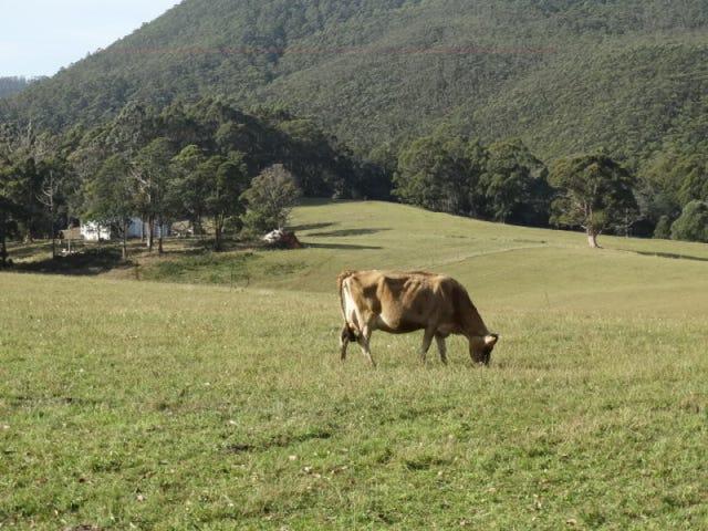 1087 Pine Road, Riana, Tas 7316