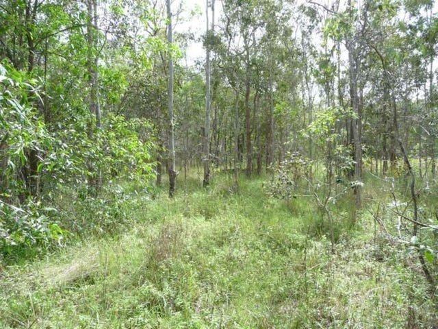 lot 19 and 20 Creevey Drive, Captain Creek, Qld 4677