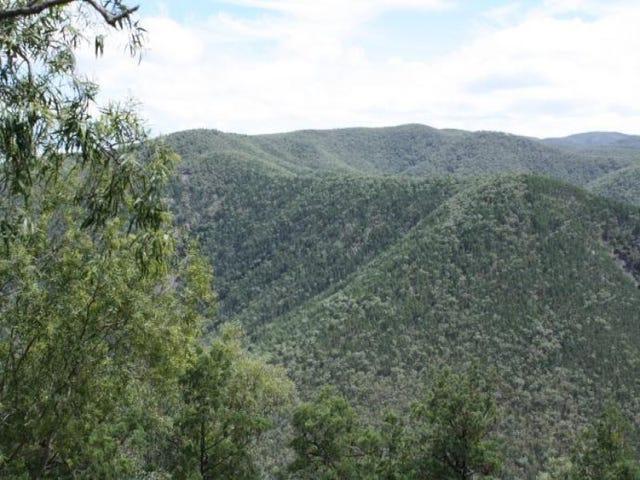 Lot 10 Mountain Creek, Tenterfield, NSW 2372