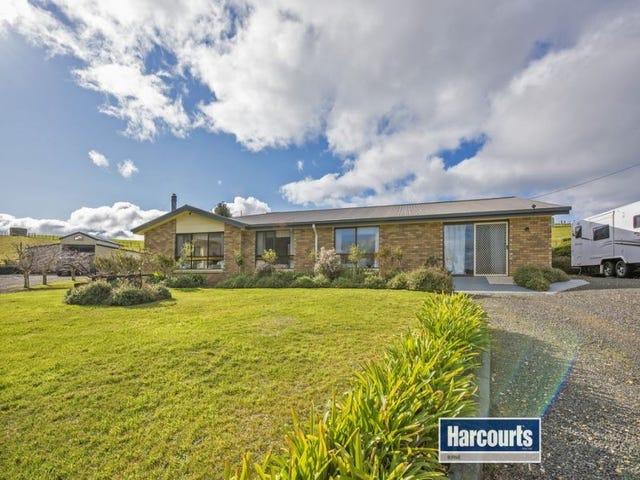 186 Old Mount Hicks Road, Mount Hicks, Tas 7325