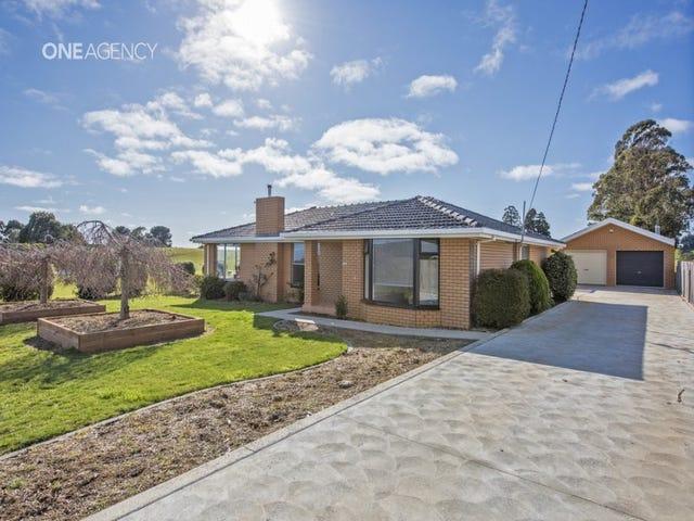1229 West Mooreville, Ridgley, Tas 7321