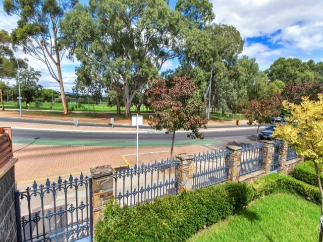 62 MACKINNON PARADE, North Adelaide, SA 5006