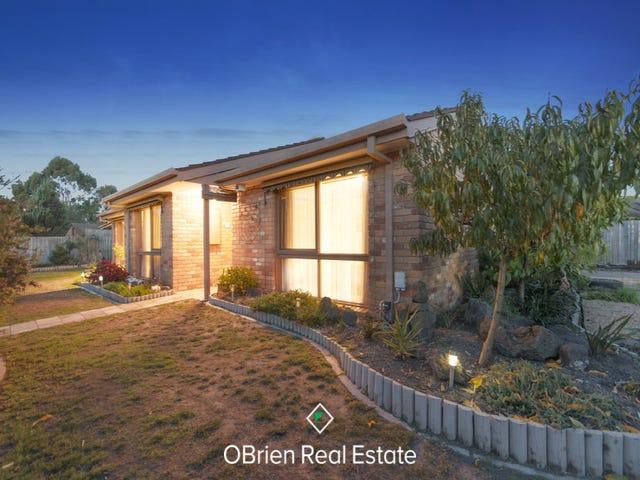 40 Granite Drive, Langwarrin, Vic 3910