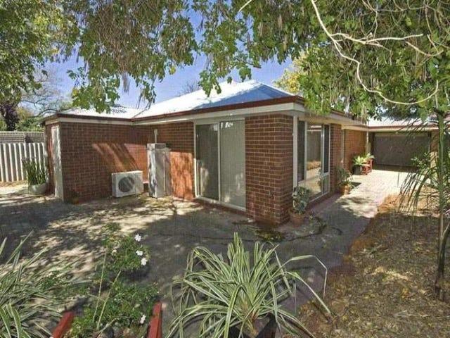 54A Dane Street, East Victoria Park, WA 6101