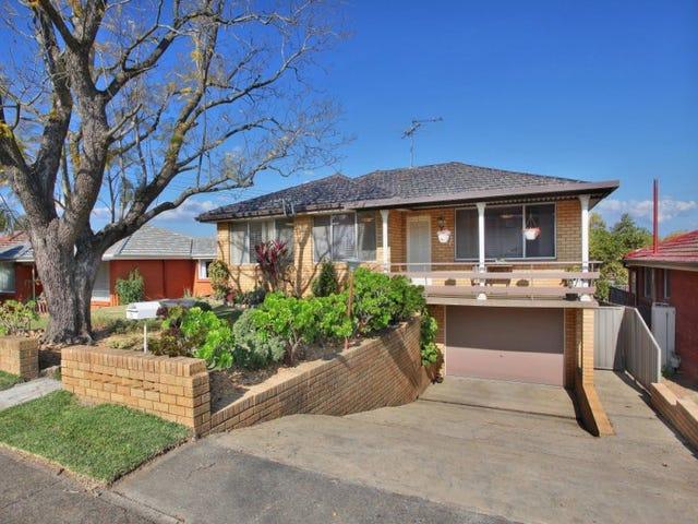 25 Athabaska Avenue, Seven Hills, NSW 2147