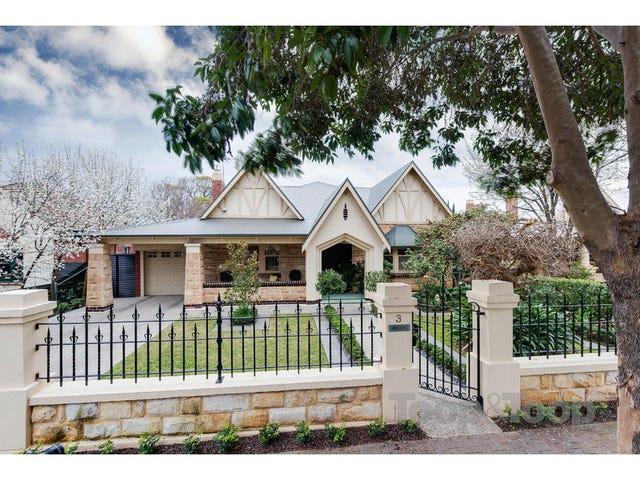3 Harvey Avenue, Westbourne Park, SA 5041