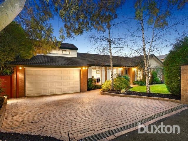 81 Brisbane Street, Berwick, Vic 3806
