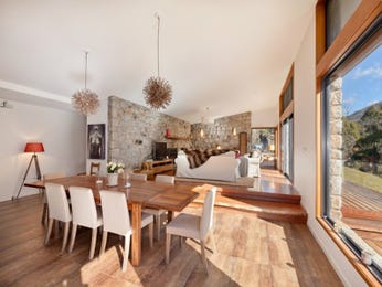 Modern dining room idea with floorboards & floor-to-ceiling windows - Dining Room Photo 15559981