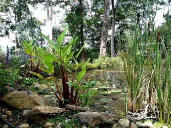 Photo of a garden design from a real Australian house - Gardens photo 107857