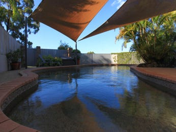 Photo of a freeform pool from a real Australian home - Pool photo 112790