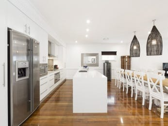 Modern kitchen-dining kitchen design using stainless steel - Kitchen Photo 15474349