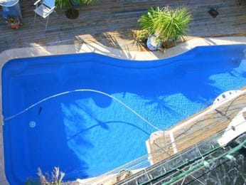 Photo of a freeform pool from a real Australian home - Pool photo 684708