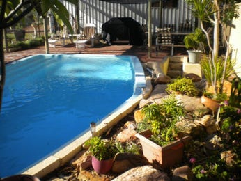 Photo of swimming pool from a real Australian house - Pool photo 8040969