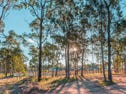 Lot 302 Forest Gum Rosella Close, Weston, NSW 2326