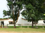 10164 Riddoch Highway, Naracoorte, SA 5271