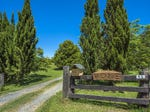 95 Camp Creek Road, Dorrigo, NSW 2453