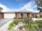 9 The Seekers Crescent, Mill Park, Vic 3082
