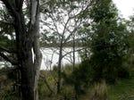 23239 Tasman Highway, Scamander
