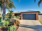27 Etherington Drive, Mildura, Vic 3500
