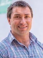 Dave Healey