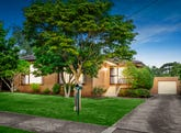 153 Mount Pleasant Road, Forest Hill, Vic 3131