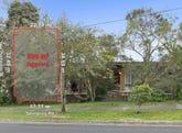 116 Springvale Road, Glen Waverley, Vic 3150