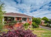 10 Nairana Avenue, Shorewell Park, Tas 7320