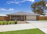 55 Harvest Boulevard, Chisholm, NSW 2322
