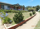 66 Berrima Road, Sheidow Park, SA 5158