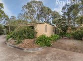 11 Maculata Walk, Vermont South, Vic 3133