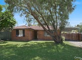 41 Kindlebark Drive, Medowie, NSW 2318