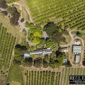 Clos Riant, 79 Miller Road, Healesville, Vic 3777