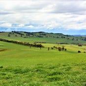 Killarney Park, 1 Apanie Road, Oberon, NSW 2787