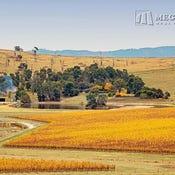 Douneside Vineyard Yarra Valley, 76 Boundary Road, Gruyere, Vic 3770