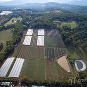 The Big Berry Farm, 925 Gembrook-Launching Place Road, Hoddles Creek, Vic 3139