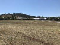 6 Daintree Circuit, Moore Creek, NSW 2340
