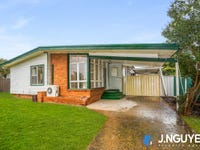 7 Bracknell Road, Canley Heights, NSW 2166