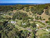 17  Benjamins Lane, Ocean Shores, NSW 2483